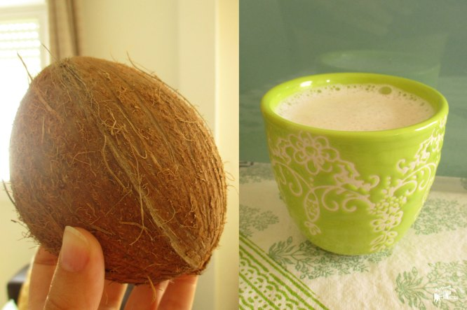 Leite de Côco - como abrir e fazer o leite - Coconut Milk - how to open and milk it zoom