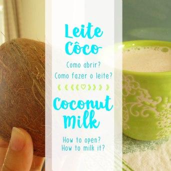 Receita/Recipe: https://arquetipicocozinhainusitada.wordpress.com/2016/03/29/leitede-coco-homemade-coconut-milk/