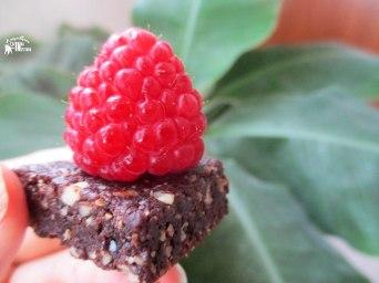 Receita/Recipe: https://arquetipicocozinhainusitada.wordpress.com/2016/06/18/mini-brownies-crus-raw/