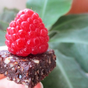 Receita/Recipe: https://arquetipicocozinhainusitada.wordpress.com/2016/06/18/mini-brownies-crus-raw/