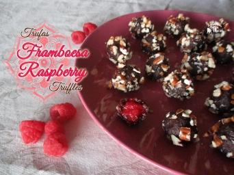 Receita/Recipe: https://arquetipicocozinhainusitada.wordpress.com/2016/07/17/trufas-de-framboesa-raspberry-truffles/