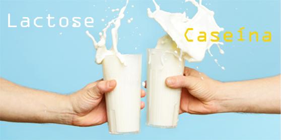 Lactose e caseína causam alergias.jpg