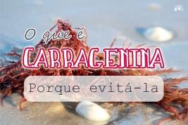O que é Carragenina - Porque evitá-la