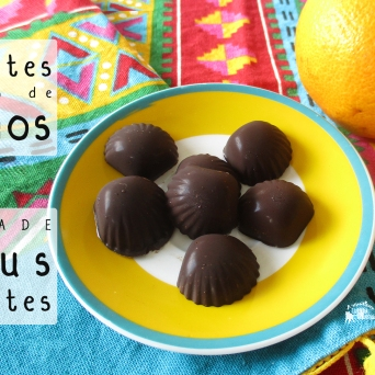Receita/Recipe: https://arquetipicocozinhainusitada.wordpress.com/2018/02/15/chocolate-caseiro-de-citrinos-homemade-citrus-chocolate/
